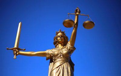 Reanudación de la actividad judicial y de los plazos procesales